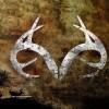 deerhorns